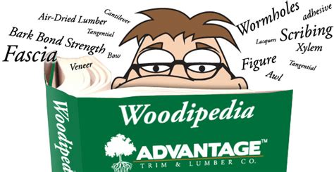 woodworking dictionary wood terms lumber glossary
