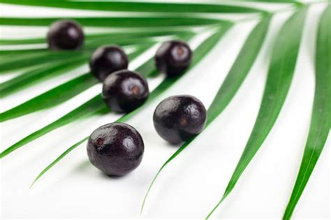 acai berry facts and myths about acai berry health