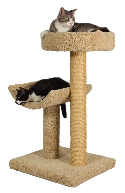 best tree for cats cat trees for large cats cat magazine
