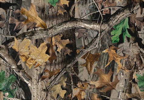 real tree tips image gallery realtree camo