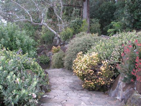 mt tomah botanic garden going botanical mount tomah botanic gardens trevor s