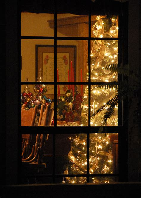 window tree with lights 353 seeing trees through the window 1000