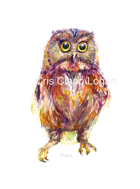 lwork owl colorful baby owl
