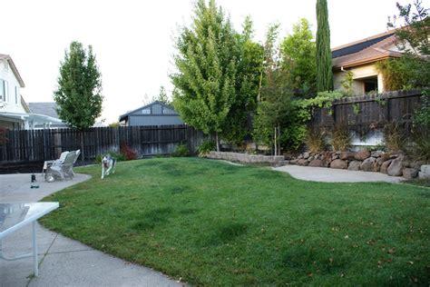 simple backyard design ideas backyard layout simple backyard design idea home furniture