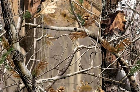 how can you keep a real tree realtree camouflage wallpaper this wallpapers
