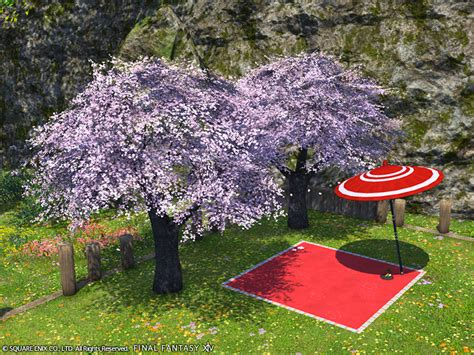 777 cherry tree rd new optional items available xiv the lodestone