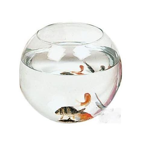 aquarium rond boule verre 20x16cm poissons pas cher