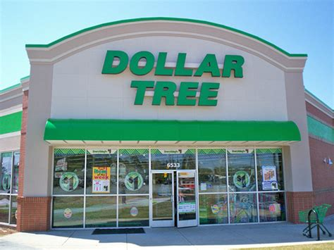 dollar tree hundreds of uprooted at dollar tree