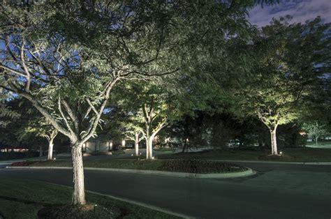 lighting the tree tree lighting outdoor lighting in chicago il outdoor