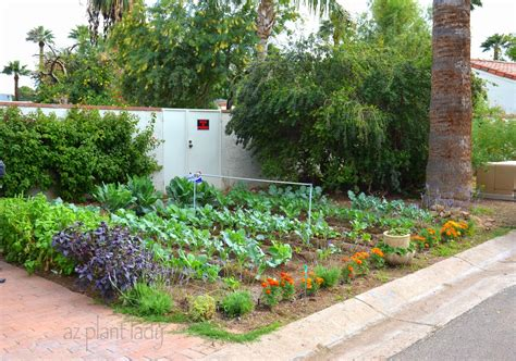 vegetable gardens vegetable gardens in places ramblings from a