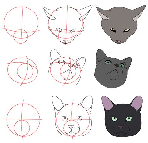 cat tutorial cat tutorial more heads by perianardocyl on deviantart
