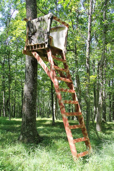where can i get a tree stand trying to prepare for next year tree stand planting