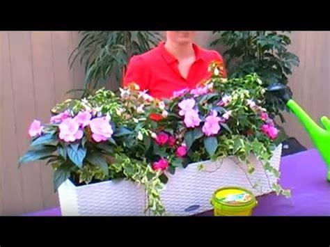 Blumenkübel Bepflanzen Vorschläge by Bellandris Balkonkasten Bepflanzen