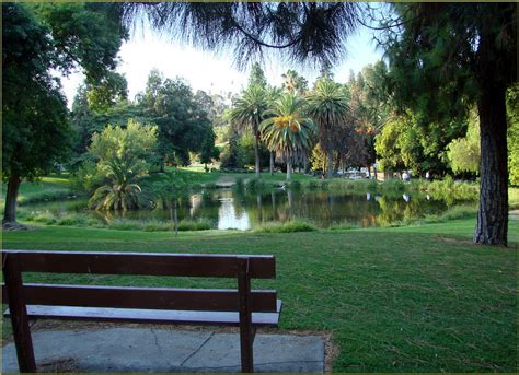 Parks Ford by Ford Park Pond Redlands Ca 8 12 1 In A