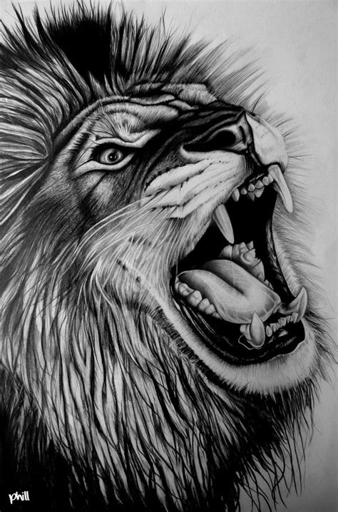 Pencil Artwork Images by Graphite Pencil Drawing Lion By Fungidesignz On Deviantart