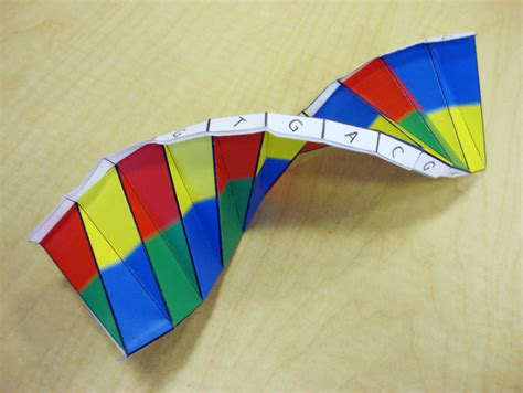 origami dna template dna origami health matters today