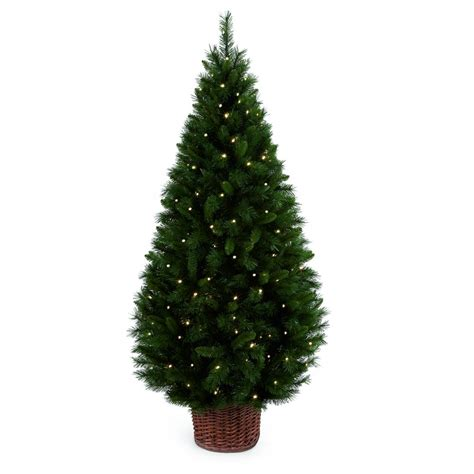 pre lit led trees premier decorations 1 8 metre led pre lit redwood