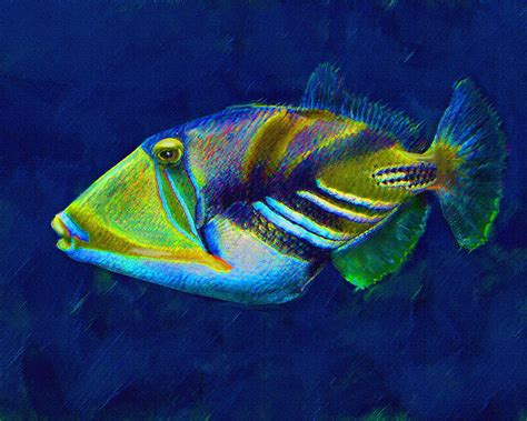picasso paintings fish picasso triggerfish digital by schnetlage