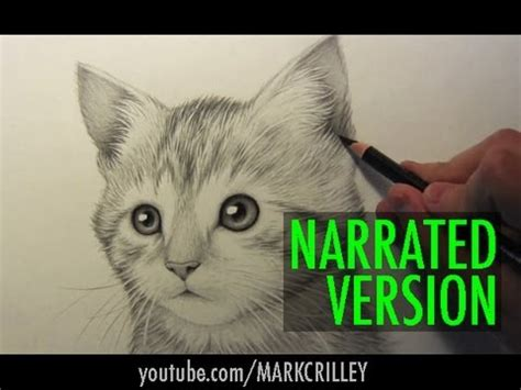 black cat painting step by step how to draw a kitten narrated step by step