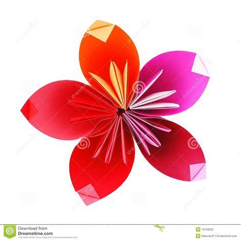 flores de origami flor de papel de origami foto de stock imagem 19139020