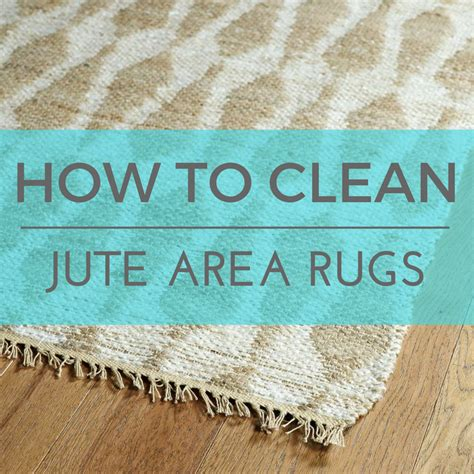 how to clean an area rug at home the definitive guide to cleaning area rugs bold rugs