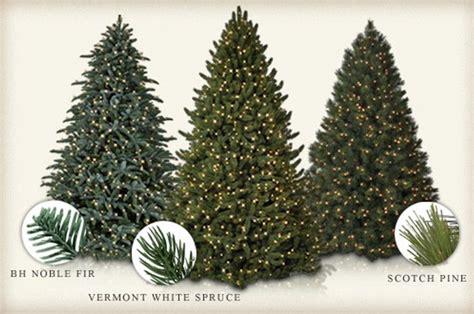 balsam pine artificial tree balsam hill trees uk 28 images nordmann fir artificial