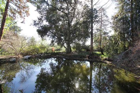 rancho santa botanic gardens these 10 paranormal cold spots are california s most
