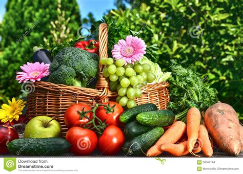garden fruits and vegetables variety of fresh organic vegetables and fruits in the