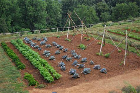 the vegetable garden potager quelle surface