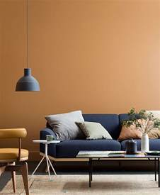 best interior colors best 25 interior colors ideas on interior