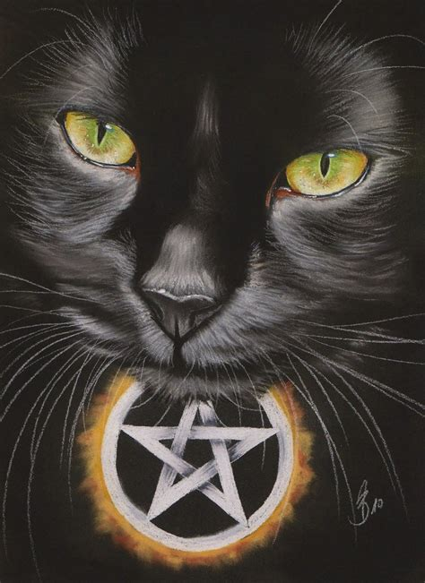 witches cat witch cat by drehli on deviantart
