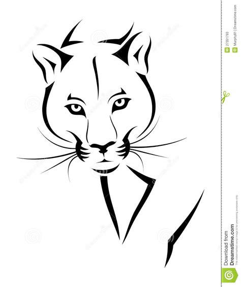 cougar tattoo stock photos image 27351793