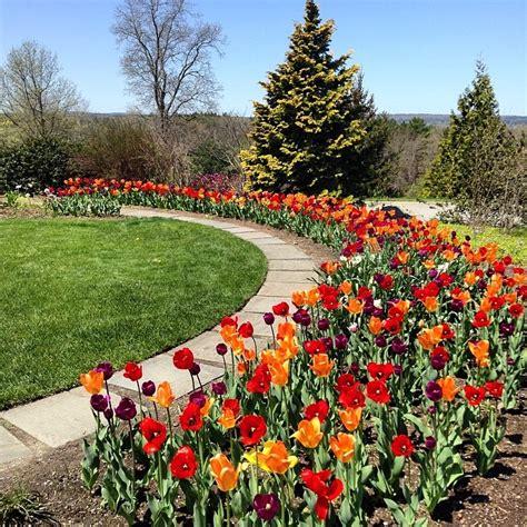 botanical gardens ma botanical gardens boston ma airninja pictures of boston
