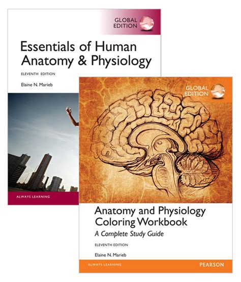 anatomy and physiology coloring workbook a complete study guide 12th edition value pack essentials of human anatomy physiology global