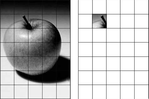 grid drawing using a grid to enlarge and transfer an image to canvas