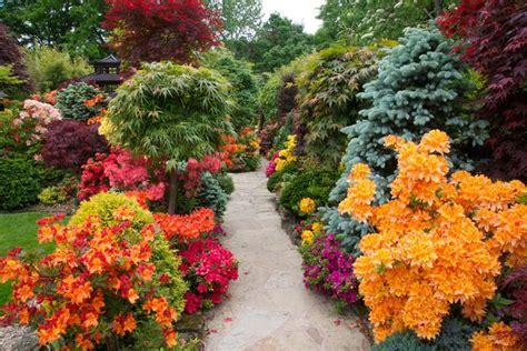 beautiful garden 18 inspirational and beautiful backyard gardens page 4 of 4