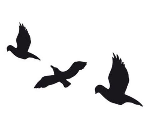 tris prior bird tatto overlay tattoo pinterest