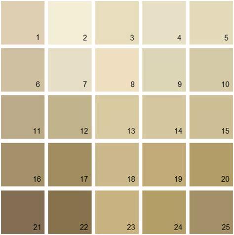 paint colors for benjamin brown paint color palette www pixshark images