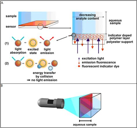 4 Fluorescent Light by Planar Oxygen Sensors For Non Invasive Imaging In