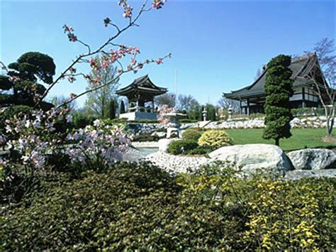 japanische garten düsseldorf oberkassel ekō haus sehensw 252 rdigkeiten metropole d 252 sseldorf