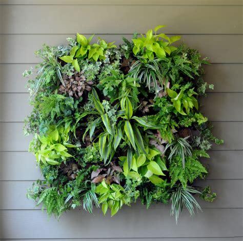 garden wall pots living wall planters