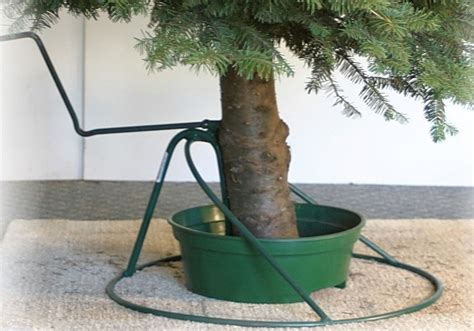 let s prepare for the upcoming winter with tree