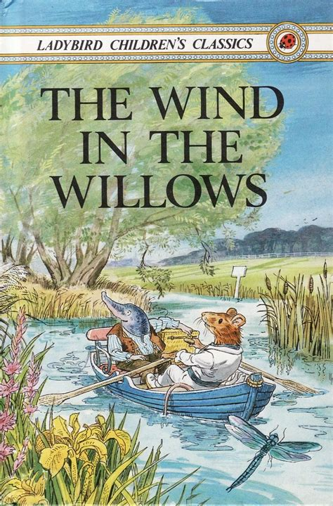 The Wind In The Willows Ladybird Book Children S Classic