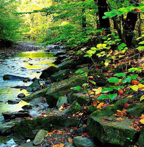 landscape rubber sts 66 best akron ohio images on akron ohio