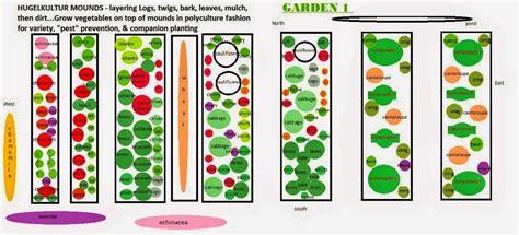 companion gardening layout vegans living the land layout of 2015 summer