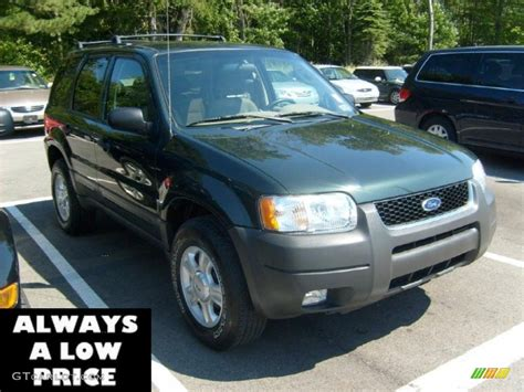 2003 Ford Escape Xlt by 2003 Aspen Green Metallic Ford Escape Xlt V6 4wd 36346882