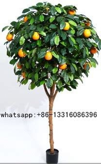 small trees for sale q010502 evergreen artificial fruit trees for sale small