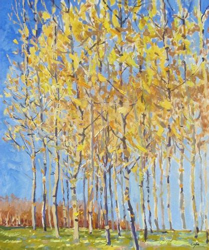 bob ross painting birch trees the world s catalog of ideas