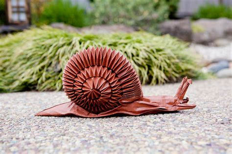 origami snail exhibit demonstrations and push the boundaries of