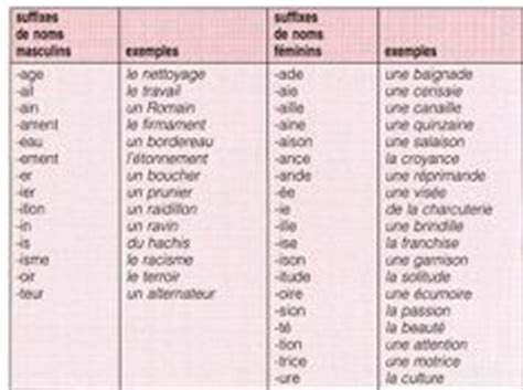1000 images about fle grammaire noms on feminine learn and